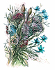 Bouquet of flowers | Stock Vector Graphics