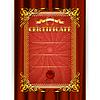 Certyfikat na tkaninie tle | Stock Vector Graphics
