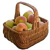 Koszyk ze świeżych jabłek | Stock Foto
