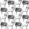 빈티지 스타일의 스케치 새해 램 | Stock Illustration