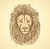 Skizze niedlichen Löwen im Vintage-Stil