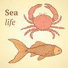 Skizzieren niedlichen Krabben und Fisch im Vintage-Stil