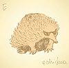 Skizze niedlichen Echidna im Vintage-Stil