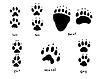 Vektor Cliparts: Tierspuren