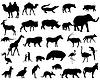 Векторный клипарт: Животные Африки