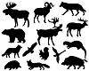 Векторный клипарт: Животные из Европы