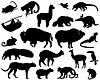 Векторный клипарт: Животные из Северной и Южной Америки