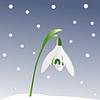 Schneeglöckchen und Schneeflocken