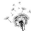 Black dandelion in wind   Stock Vector Graphics