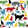 Nahtlose Hintergrund mit bunten Katzen und Hunde