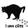 나는 고양이 카드를 사랑 | Stock Vector Graphics