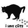Kocham koty karty | Stock Vector Graphics