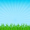 Векторный клипарт: зеленая трава