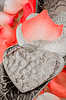 Porcelain Hearts and Rose Peddles | Stock Foto