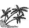 Satz von Palmen Tropische Palmen, schwarz
