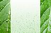 Ökologie Hintergrund. Kopieren Sie Platz | Stock Photo