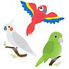 Satz von Cartoon Papageien