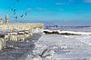 ID 4644045 | Encrusted Black Sea city embankment and gulls | Foto stockowe wysokiej rozdzielczości | KLIPARTO