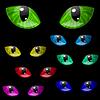 Augen von Katze