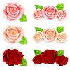 Set Rosen mit grünen Blättern