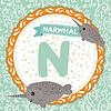 ABC Tiere N Narwal. Kinder Englisch Alphabet
