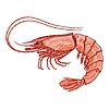 Decorative shrimp | Stock Vector Graphics