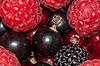 Verschiedene Berry | Stock Foto