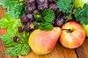 Verschiedene Früchte | Stock Foto