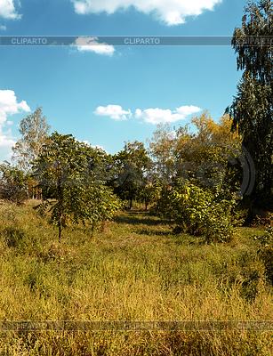 Kleine Gasse | Foto mit hoher Auflösung |ID 4513048