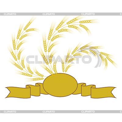 Колосья пшеницы и ржи фото