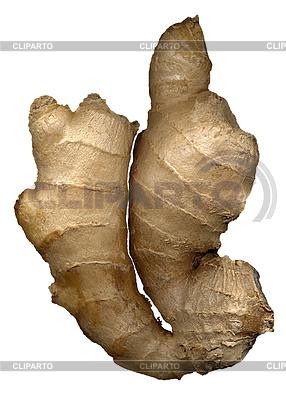 Ginger white | Foto stockowe wysokiej rozdzielczości |ID 4664541