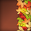 Vector clipart: Autumn Fall Leaves